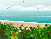 Tropical beach background Royalty Free Stock Photography