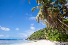 Tropical beach background Stock Images