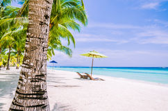Tropical beach background at Panglao Bohol island with Beach chairs on the white sand beach with blue sky and palm trees Royalty Free Stock Image