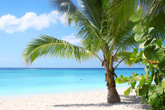 Tropical beach and bay stock image