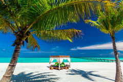 Tropical beach, beautiful blue sky, palm trees and place to rela Royalty Free Stock Image