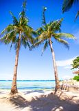 Tropical beach with beautiful palms and white sand Royalty Free Stock Photos