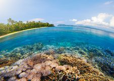 Tropical beach with beautiful underwater world on a background o Stock Image
