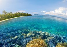 Tropical beach with beautiful underwater world on a background o Royalty Free Stock Photography