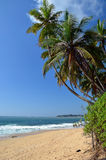 Tropical beach and blue sky by the sea vertical photo Stock Images