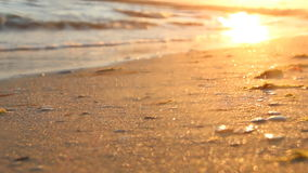 Tropical beach, blurred photo for background stock footage
