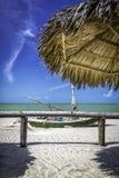 Tropical beach in Brazil Stock Photos