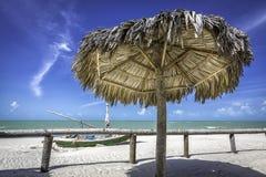 Tropical beach in Brazil Royalty Free Stock Photos