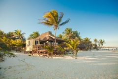 Tropical beach bungalow on ocean shore among palm Royalty Free Stock Photo