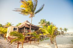 Tropical beach bungalow on ocean shore among palm Royalty Free Stock Images