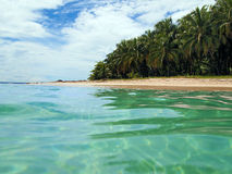 Tropical beach in caribbean stock photos