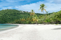 Tropical beach Royalty Free Stock Images