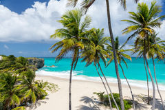 Tropical beach on the caribbean island (Bottom Bay, Barbados) Stock Images