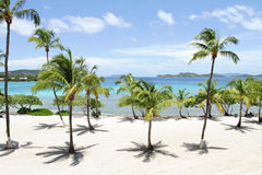 Tropical Beach, Caribbean Stock Photography