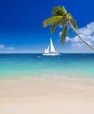 Tropical beach in Caribbean Sea Stock Photos