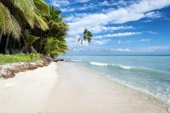 Tropical beach in caribbean sea,  Saona island, Dominican Republic Royalty Free Stock Photos