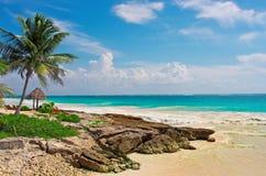 Tropical beach in caribbean sea. Yucatan, Mexico. Stock Images