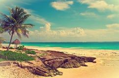 Tropical beach in caribbean sea, Yucatan. Mexico. Royalty Free Stock Photo
