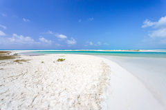 Tropical beach in Cayo Largo island Stock Images