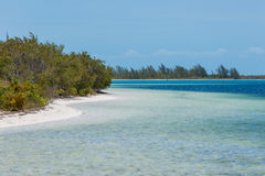 Tropical beach in Cayo Largo island Stock Photography