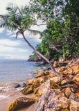 Tropical Beach Cayos Cochinos Royalty Free Stock Photos