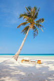 Tropical beach with chairs Royalty Free Stock Photos