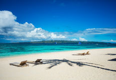 Tropical beach with chaise longues Royalty Free Stock Images