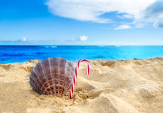 Tropical beach Christmas and New Year background Stock Photography