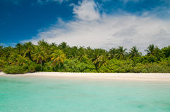 Tropical Beach Coastline Stock Image