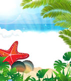 Tropical beach with cockleshells and starfishes Royalty Free Stock Images