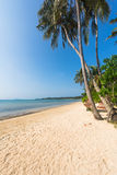 Tropical Beach and Coconut palm tree at Koh Mak Island Royalty Free Stock Photography