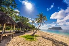 Tropical beach with a coconut palm trees and a beach fales, Samo Stock Photos