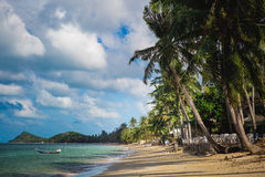 Tropical beach with coconut palm trees. Koh Samui Royalty Free Stock Photography