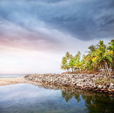Tropical beach. With coconut palm trees near the blue ocean at overcast dramatic sky in Varkala, Kerala, India Royalty Free Stock Images