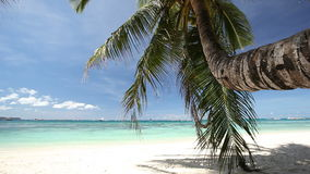Tropical beach with coconut palm and white sand. Philippines, Boracay Island stock video footage