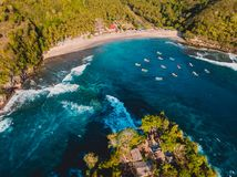 Tropical beach with coconut palms and turquoise ocean with waves. Crystal bay, Nusa Penida. Aerial view. Tropical beach with coconut palms and turquoise ocean royalty free stock photography