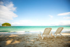 Tropical beach with coconut tree royalty free stock images