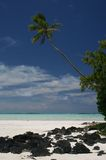 Tropical beach Cook Islands Royalty Free Stock Images