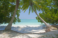 Tropical Beach. Coral sea at Silver Sands beach in india Stock Image