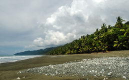 Tropical Beach - Costa Rica. Corcovado National Park - beach view, Osa Peninsula - Costa Rica Stock Images