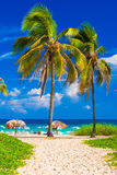Tropical beach in Cuba Stock Photography