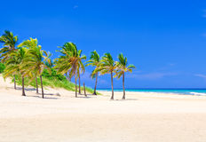 Tropical beach in Cuba Stock Photo