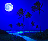 Tropical beach in Cuba at night. Beautiful tropical beach in Cuba at night with a bright full moon over the ocean Stock Photo