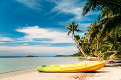 Tropical beach with curved palm trees and yellow canoe Stock Photos