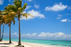 Tropical Beach Day in Punta Cana royalty free stock images