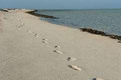 Tropical beach on a desert island with footprints Stock Images