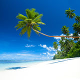 Tropical beach destination outdoors concept Royalty Free Stock Photography