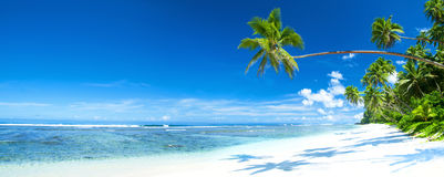 Tropical Beach Destination Panorama Concept