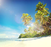 Tropical Beach Destination Travel Destination Concept Royalty Free Stock Images