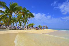 Tropical beach in Dominican republic, Caribbean Royalty Free Stock Images